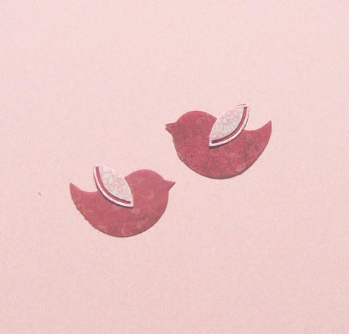 Dva ptáčci s křidélky