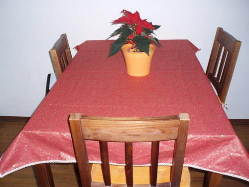 Červenozlaté Vánoce (10)