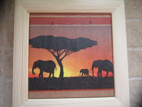 Afrika 6