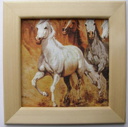 Obrázek č.79 - Koně