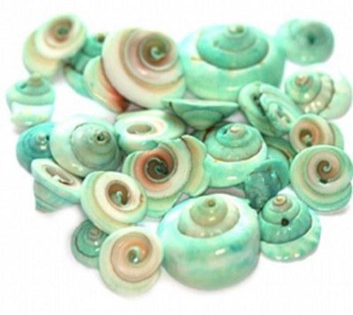 Korálky mušle 180g - spirálky, blankytně modrá
