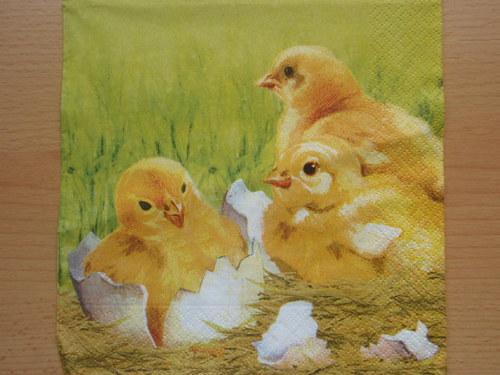 Ubrousek - kuřátka