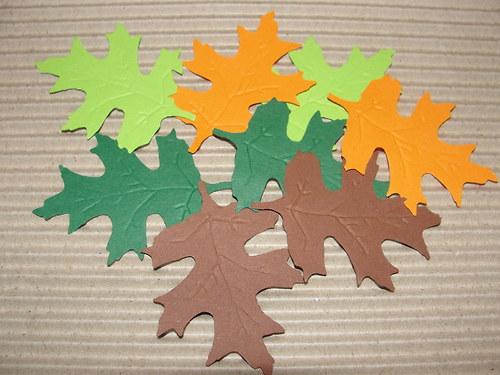 barevné listí