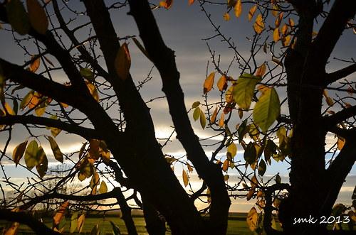 Podzim - autorská fotografie
