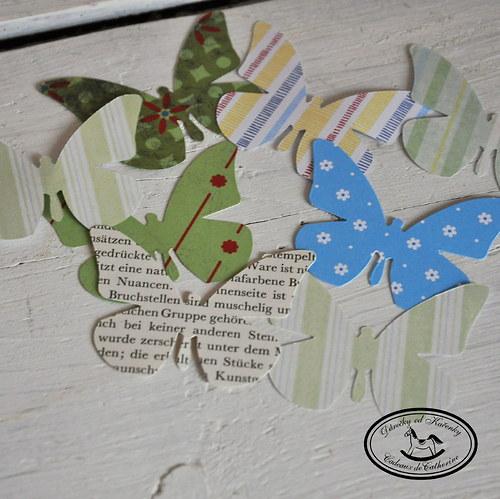 Motýlci směs