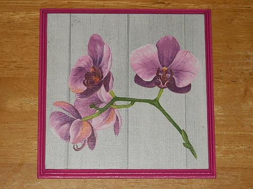 Obrázek na MDF destičce Orchidej II