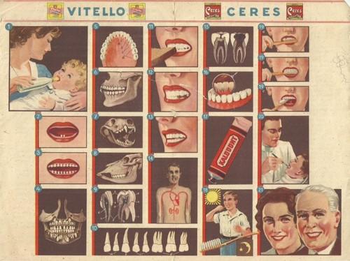 Reklamní okénko pro děti vše o zubech zubní