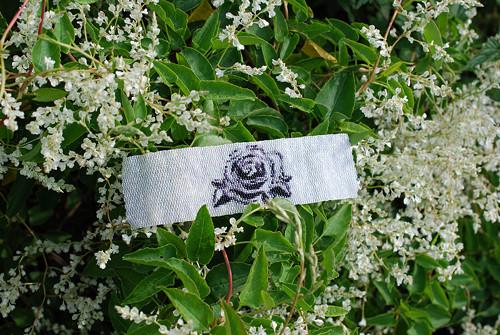 ...na růžích ustláno...