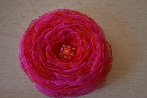 Červeno-růžový květ.