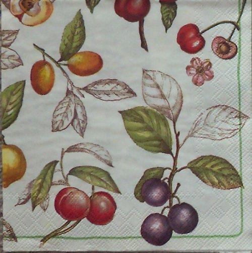 Ovocné větvičky