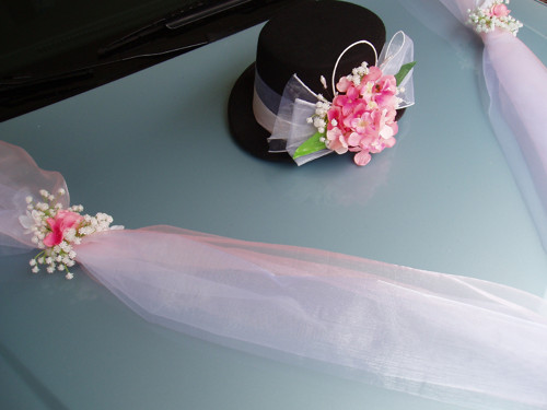 Set na auto-růžové hortenzie