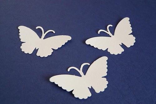 motýlci I