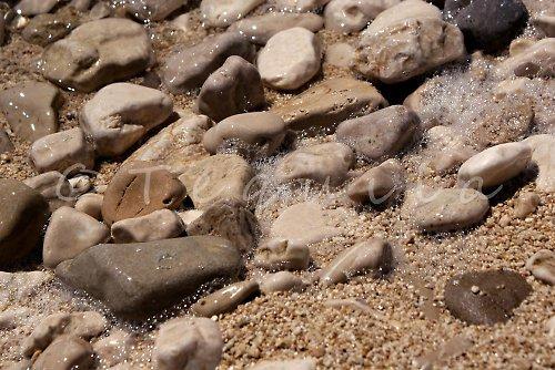 Zrozeni z mořské pěny