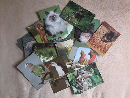 Retro pohlednice Zvířata a ptáci mix, sada 12ks