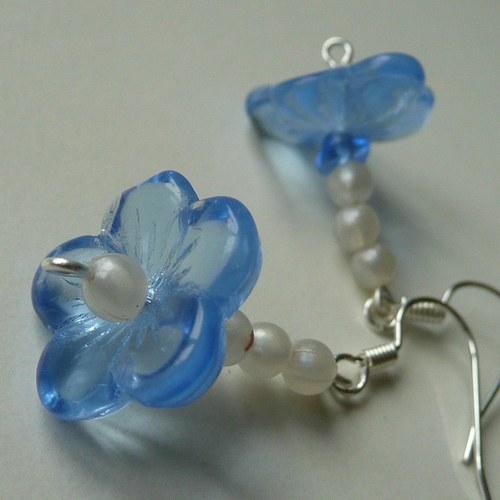 Modré květinkové