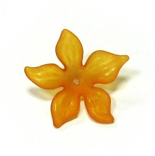 Květ velký oranžový matný
