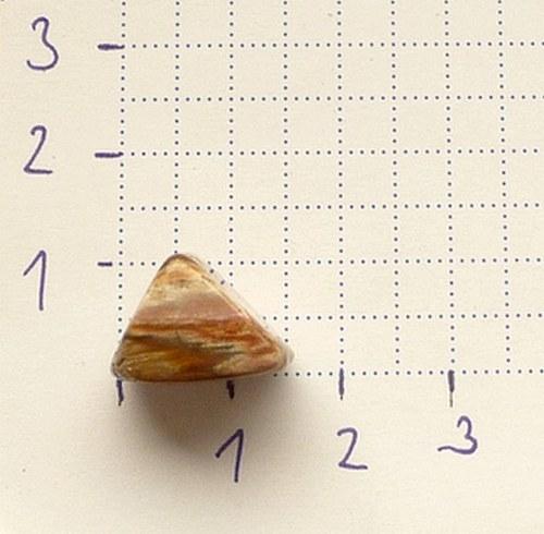 Zkamenělé dřevo -trojhránek