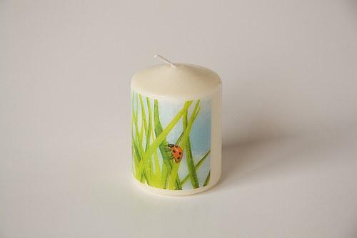 Svíčka s beruškou v trávě
