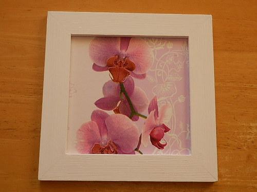 Obrázek Růžová orchidej