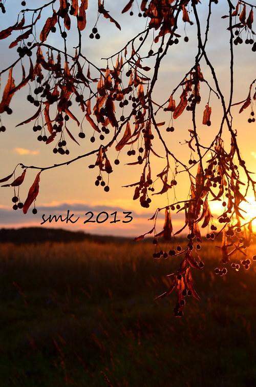 Podzimní večer - autorská fotografie