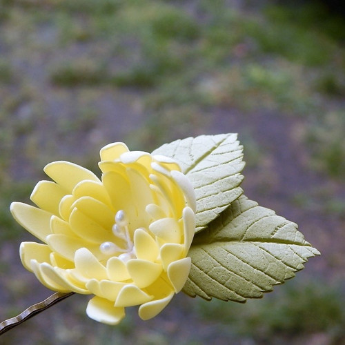 Květinka-sponečka