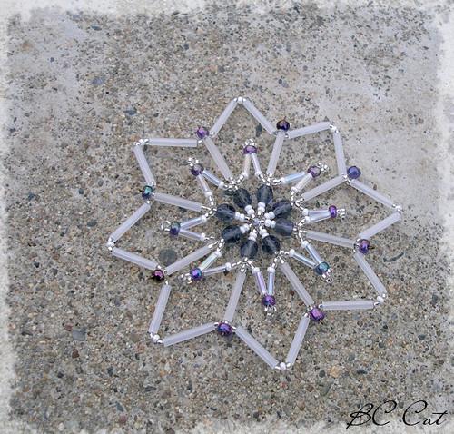 Bílo-fialová hvězda