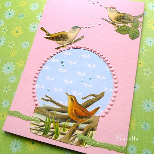 Ptačí písničky -  přání