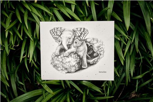 Slon s křídly • pohlednice přírodní