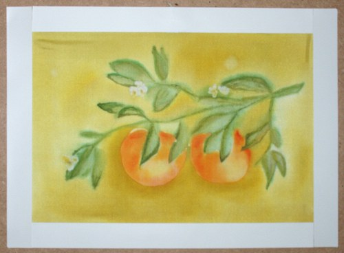 Pomeranče 26 x 31,5