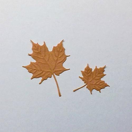 Listy javoru  (filc-plsť)