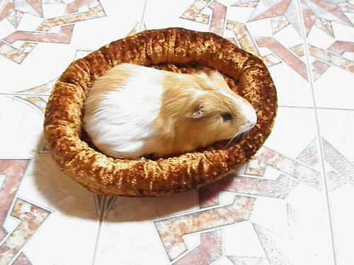 model pelíšku-pro mrňousky