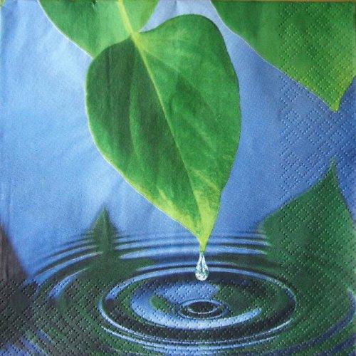 Ubrousek s listem a kapkou vody