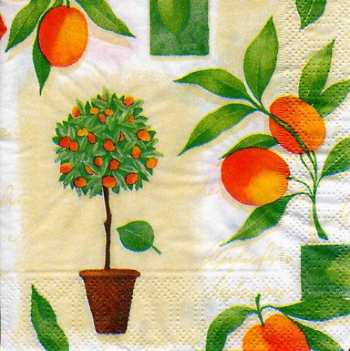 Ubrousek s mandarinkami