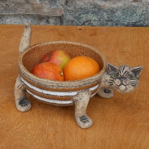 Miska kočka oranžová