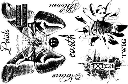 PaperArtsy Petals Plate 4, cling razítko
