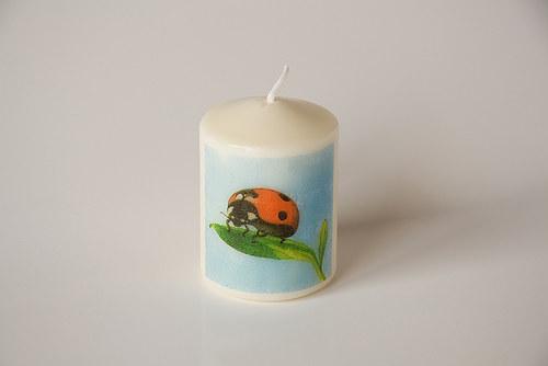 Svíčka s beruškou na listu