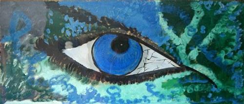 Oko do duše