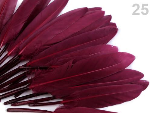 Ozdobné kachní peří, d.9-14 cm - vínová