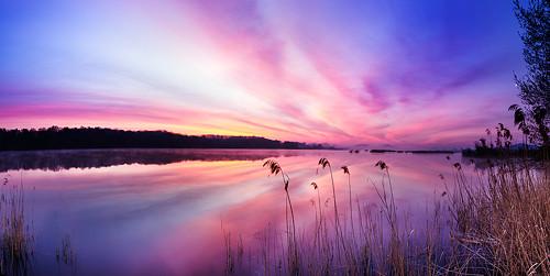 Novozámecký rybník svítání