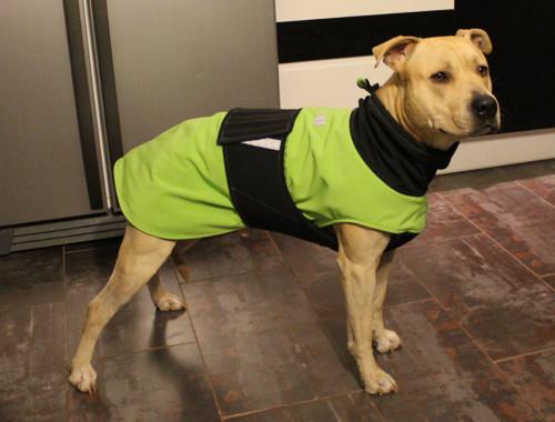 Softshellový obleček pro psa 65 cm