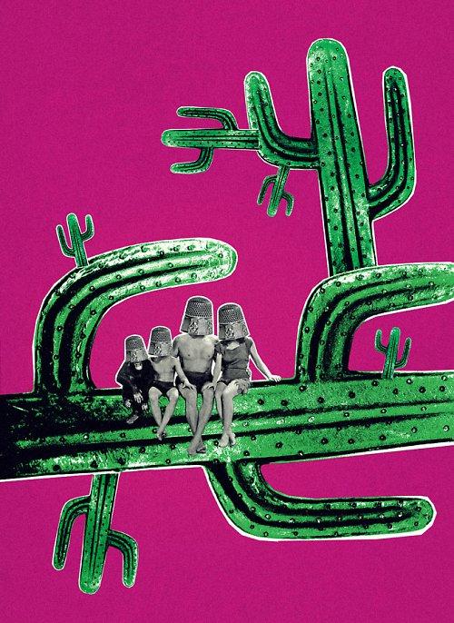 Cactus Family 1