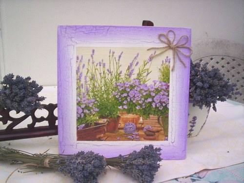 Levandulový obrázek 8 - levandulová zahrádka