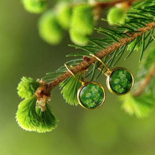 Zelená louka