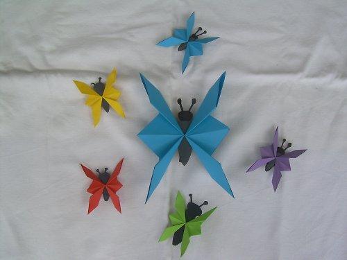 Motýlci 18X11