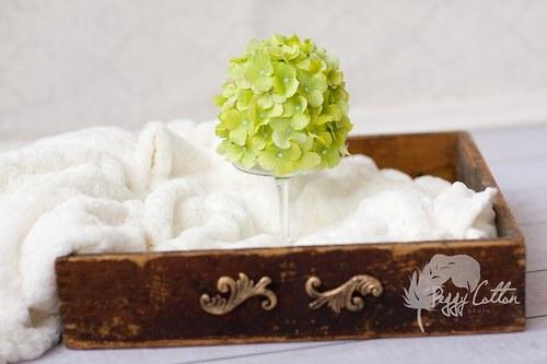 Hortenziová zelená svěží vel. 0-1 měsíc