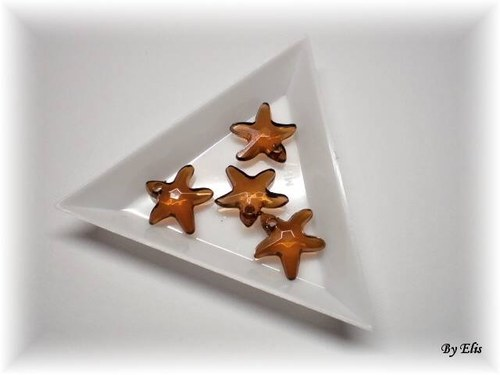 Mořské hvězdy hnědé, 6ks