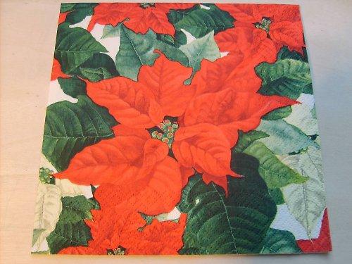 Ubrousek - vánoční hvězda 1