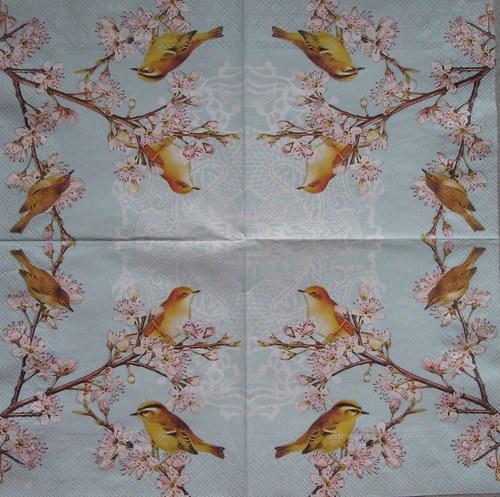 Ptáčci na květech č. 1712