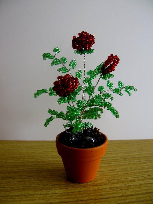 Růže z korálek