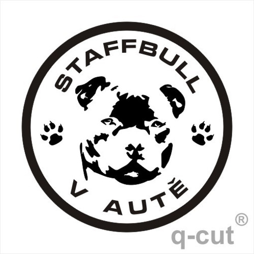 Staffbull v autě